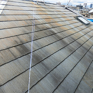 屋根のカビやコケ
